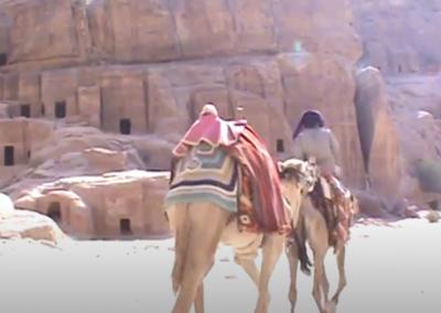 Petra Camels Idols